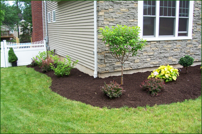 Country Landscaping - Lawn Installation and Removal