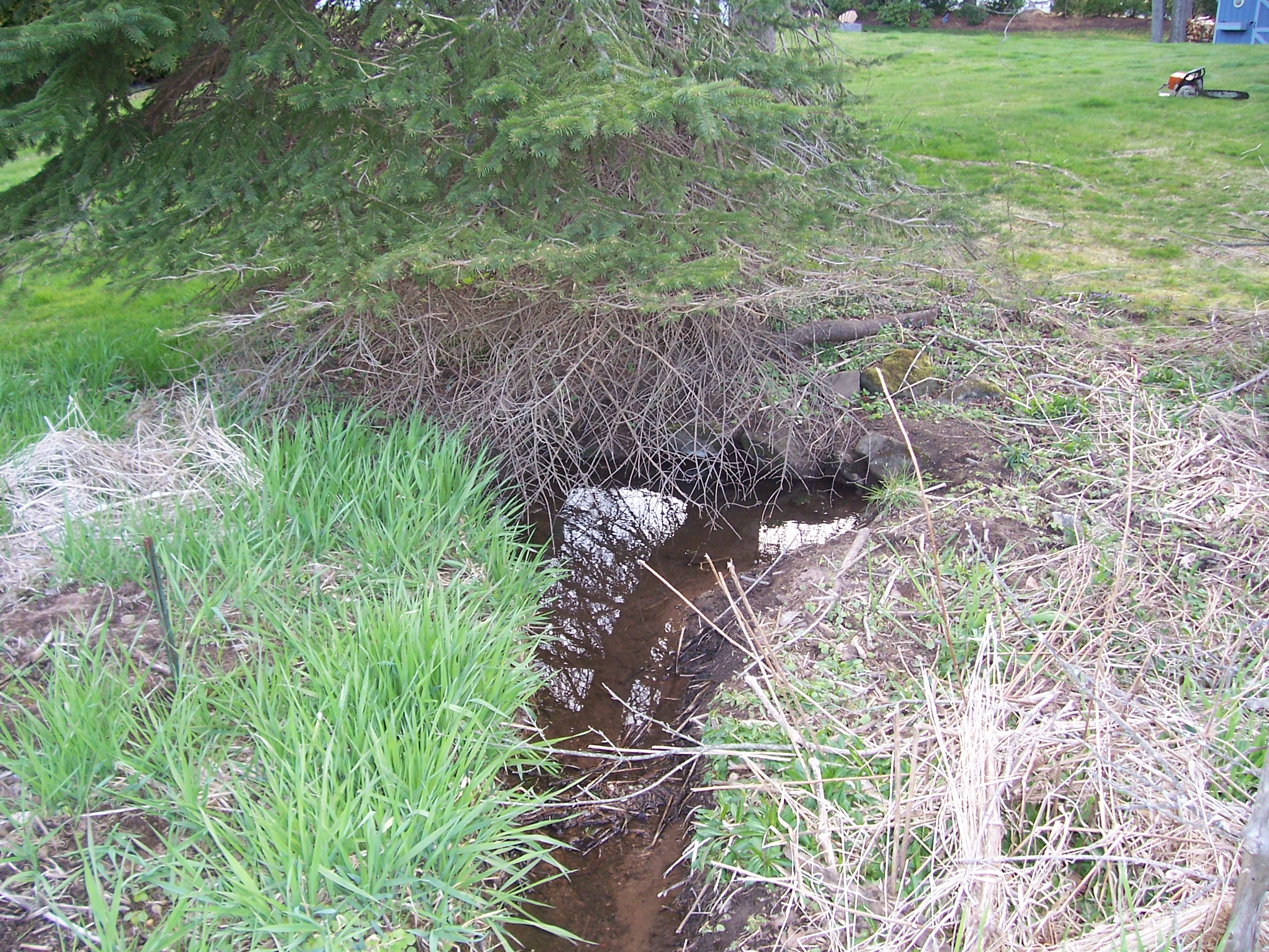Clogged Underground Drain Repair   Country Landscaping, LLC